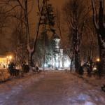 """Biserica """"Pogorârea Sfântului Duh"""" din Rădăuți"""
