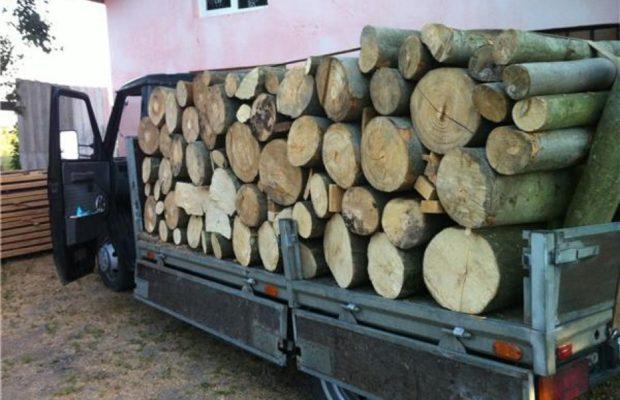 Comunicat lemn de foc