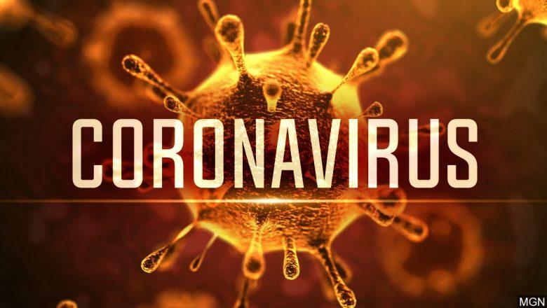 Comunicat cu privire la linia TELVERDE destinata cetacenilor care doresc informatii legate de prevenirea infectarii cu virusul COVID-19 (coronavirus)