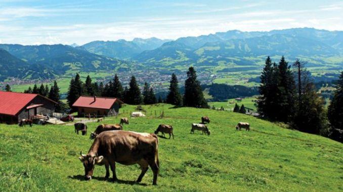 Comunicat de presa privind fermierii din zona montana care pot solicita fonduri europene prin PNDR 2020 pentru abatoare cu capacitate mica pana la 31 martie 2021
